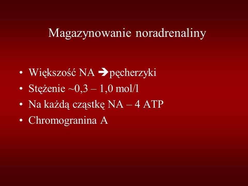 Magazynowanie noradrenaliny
