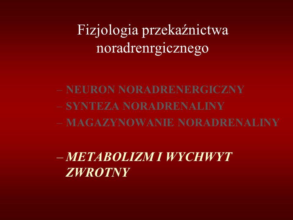 Fizjologia przekaźnictwa noradrenrgicznego