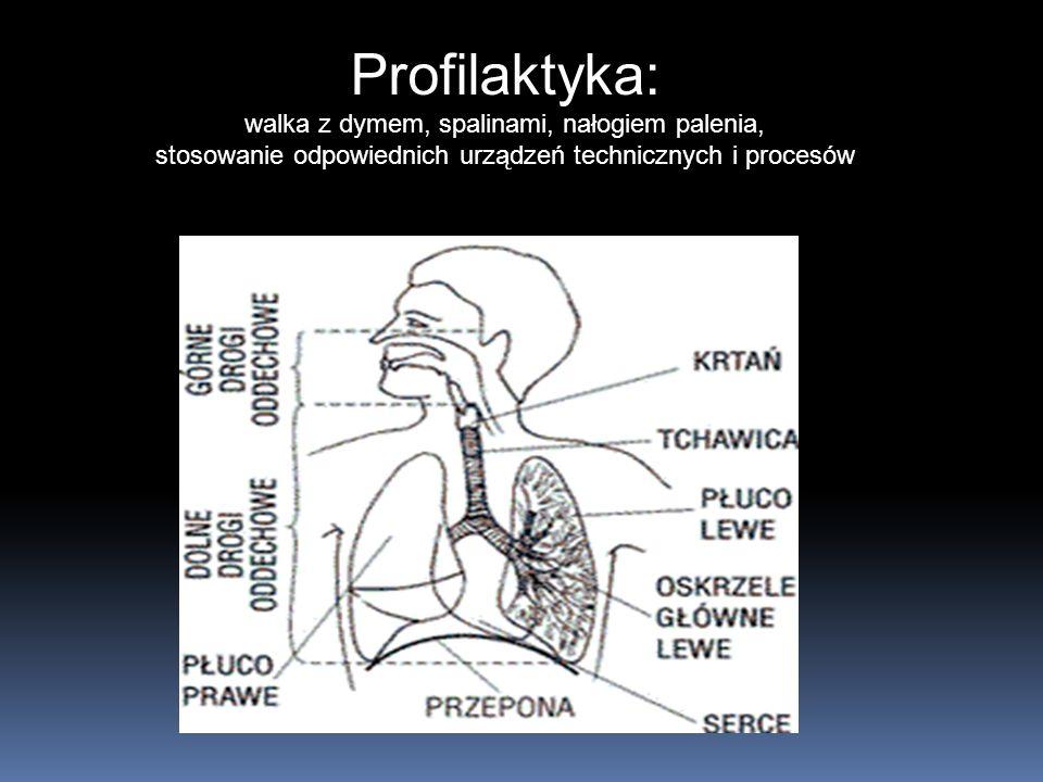 Profilaktyka: Układ oddechowy (górne i dolne drogi oddechowe)