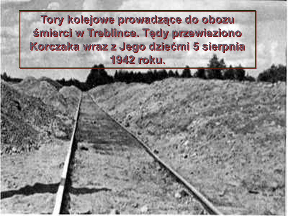 Tory kolejowe prowadzące do obozu śmierci w Treblince