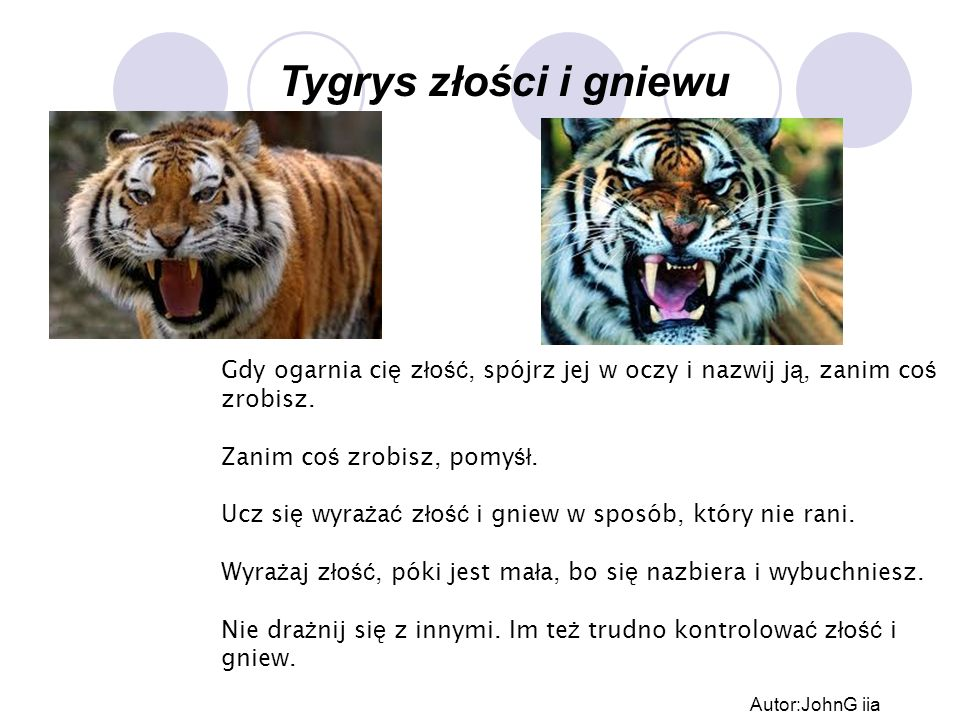 Tygrys złości i gniewu Gdy ogarnia cię złość, spójrz jej w oczy i nazwij ją, zanim coś zrobisz. Zanim coś zrobisz, pomyśł.