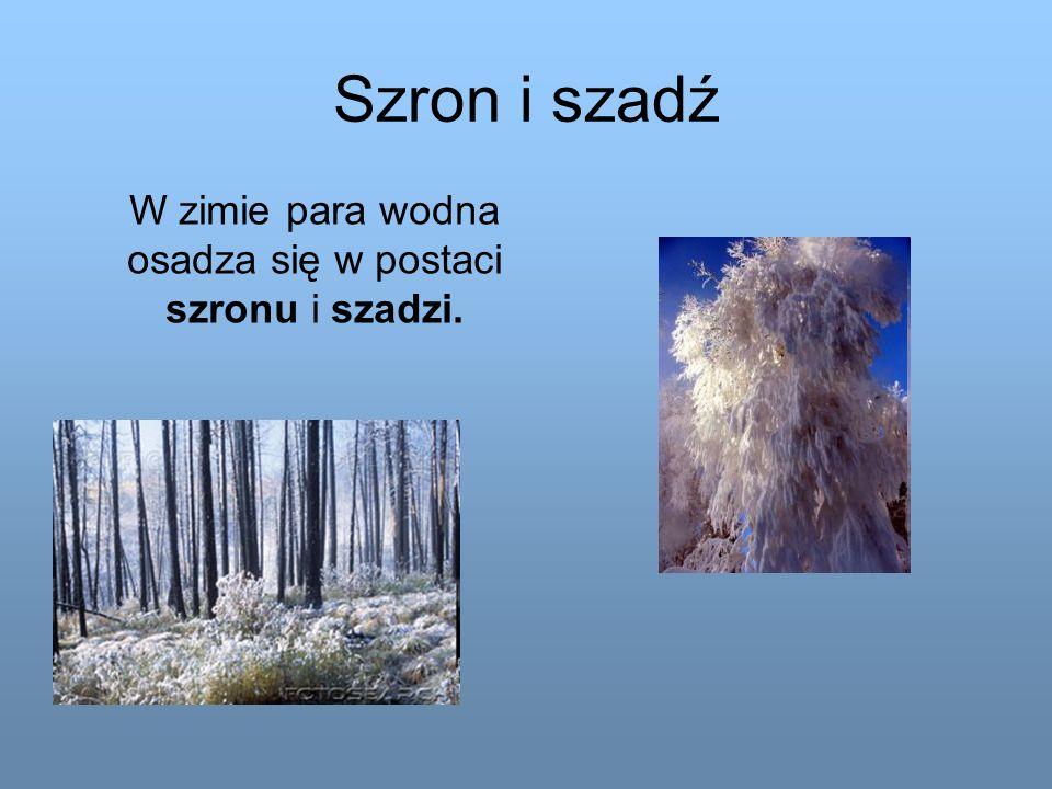 W zimie para wodna osadza się w postaci szronu i szadzi.