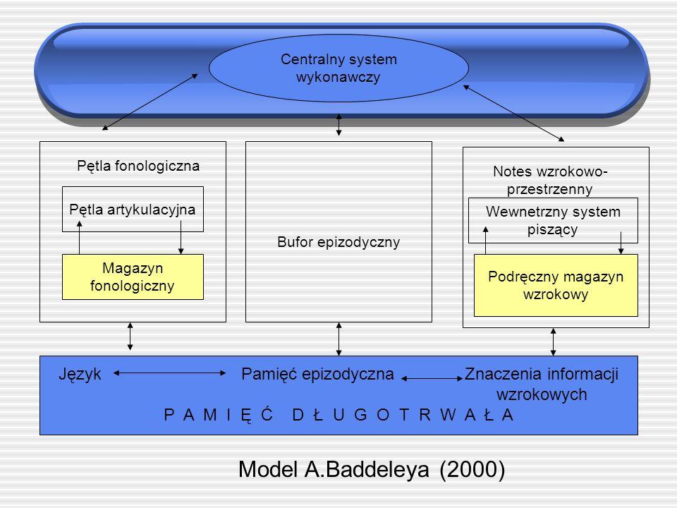 Model A.Baddeleya (2000) Język Pamięć epizodyczna Znaczenia informacji