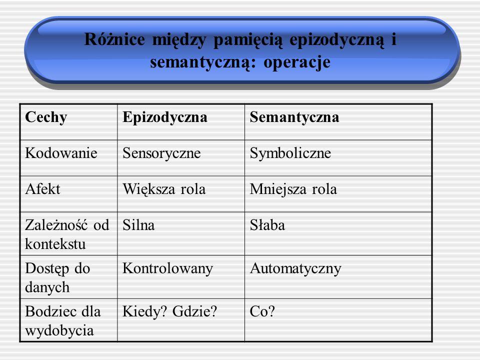 Różnice między pamięcią epizodyczną i semantyczną: operacje