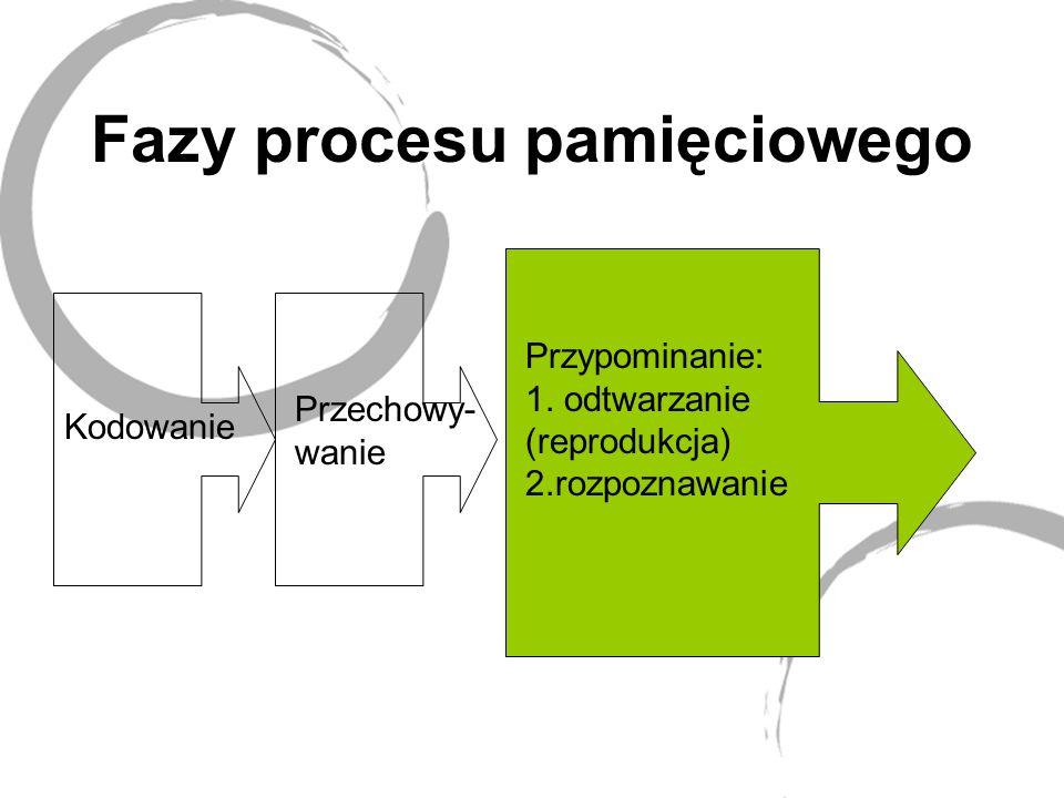 Fazy procesu pamięciowego