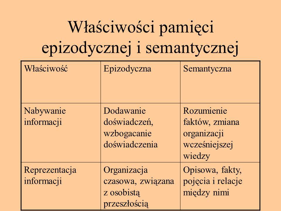 Właściwości pamięci epizodycznej i semantycznej