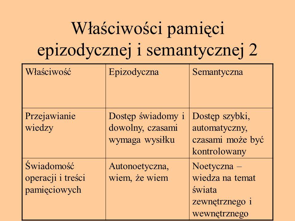 Właściwości pamięci epizodycznej i semantycznej 2
