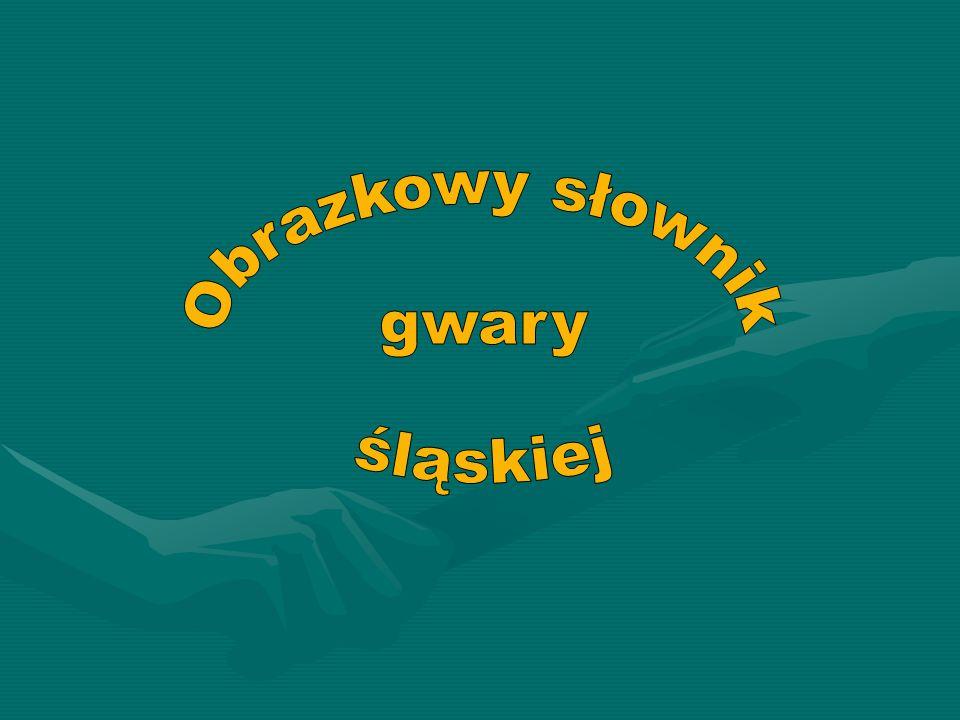 Obrazkowy słownik gwary śląskiej