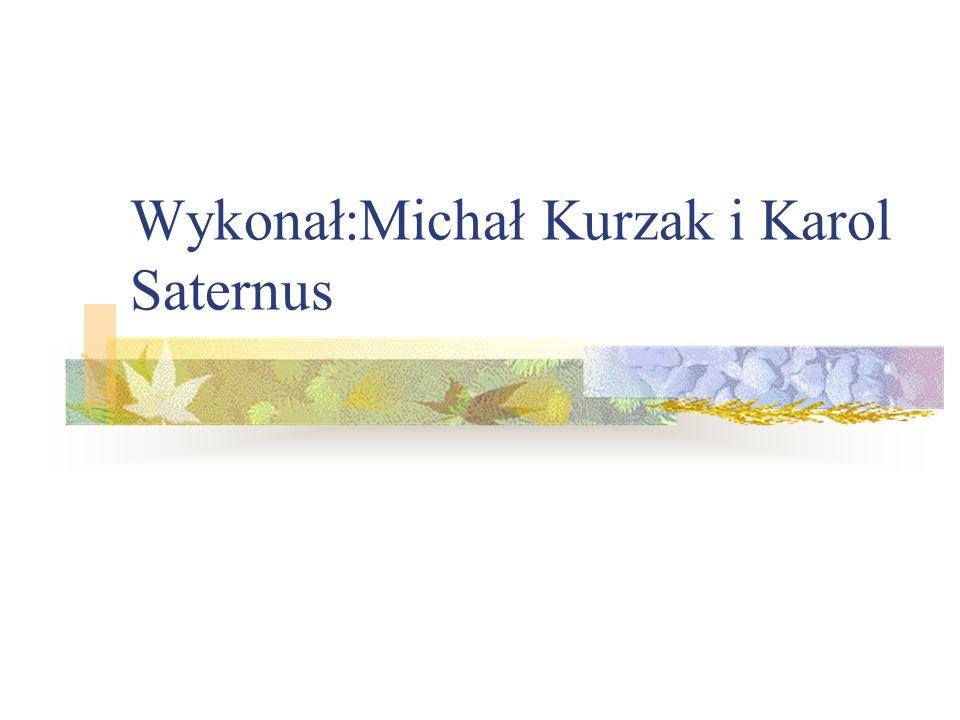 Wykonał:Michał Kurzak i Karol Saternus