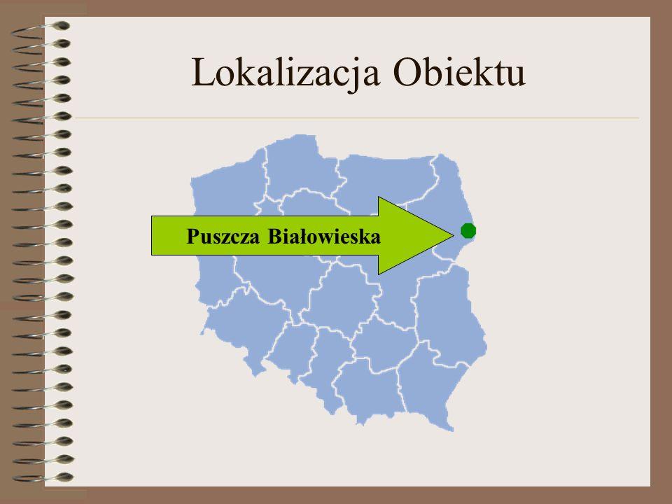 Lokalizacja Obiektu Puszcza Białowieska