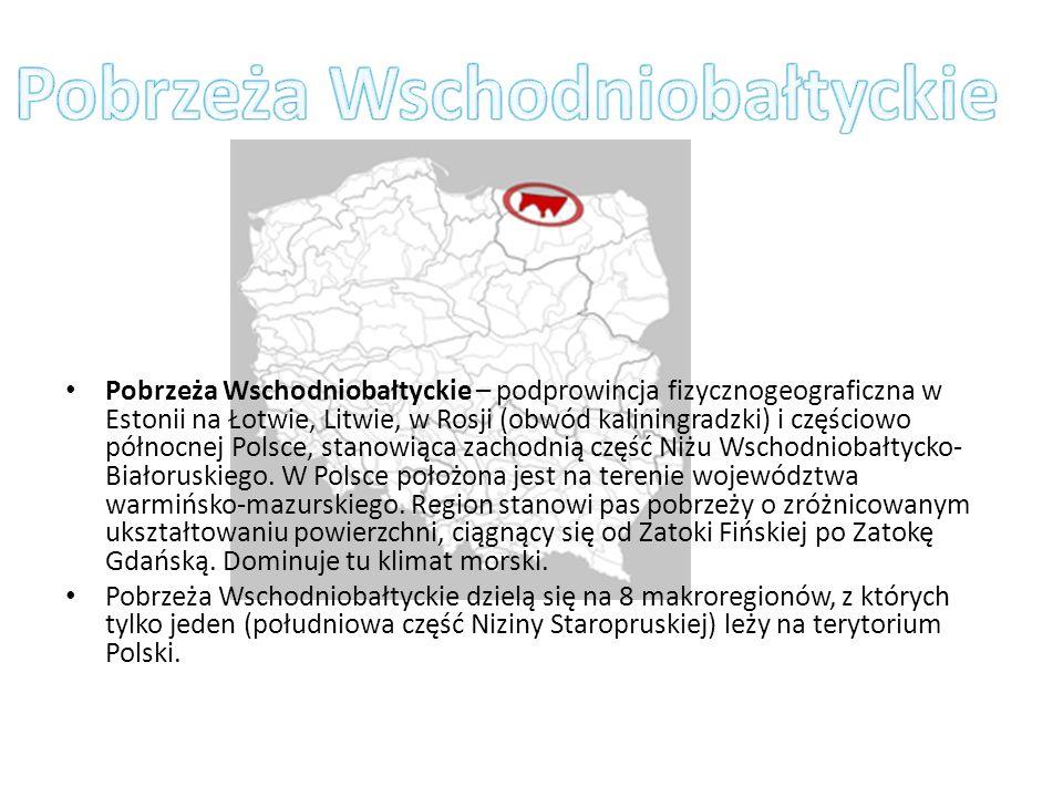 Pobrzeża Wschodniobałtyckie