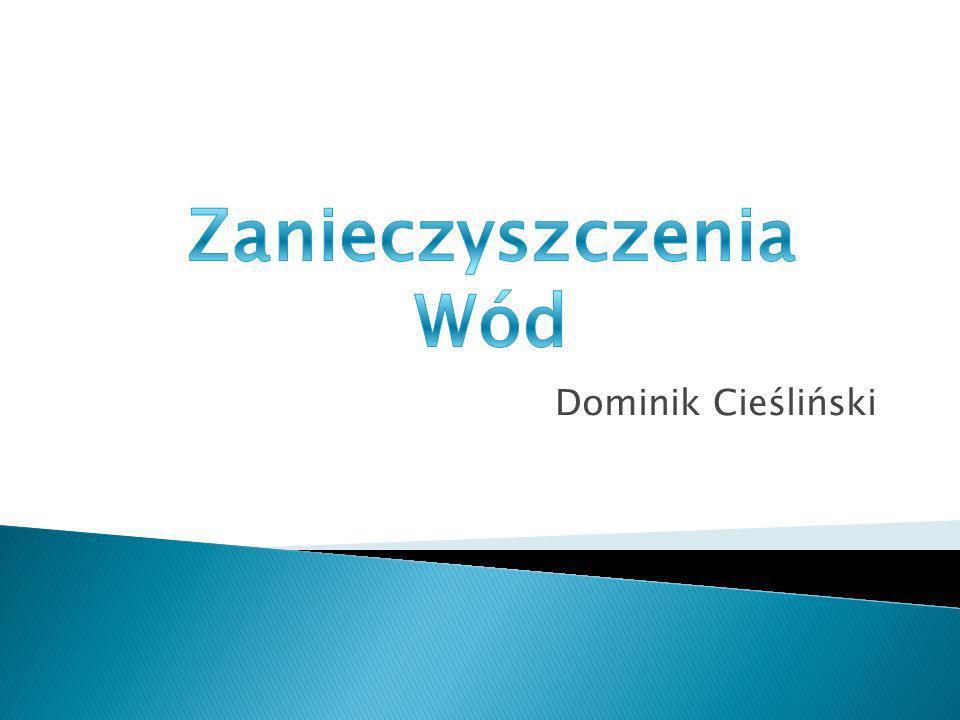 Zanieczyszczenia Wód Dominik Cieśliński