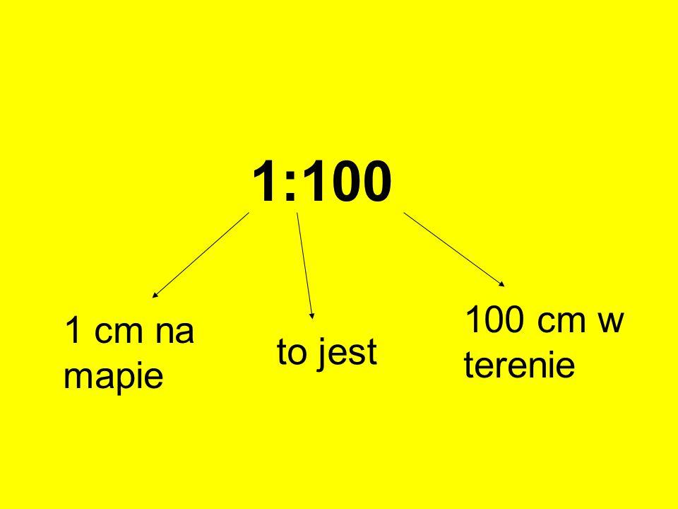 1:100 100 cm w terenie 1 cm na mapie to jest