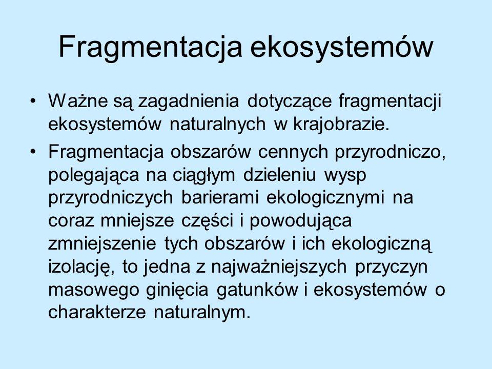 Fragmentacja ekosystemów