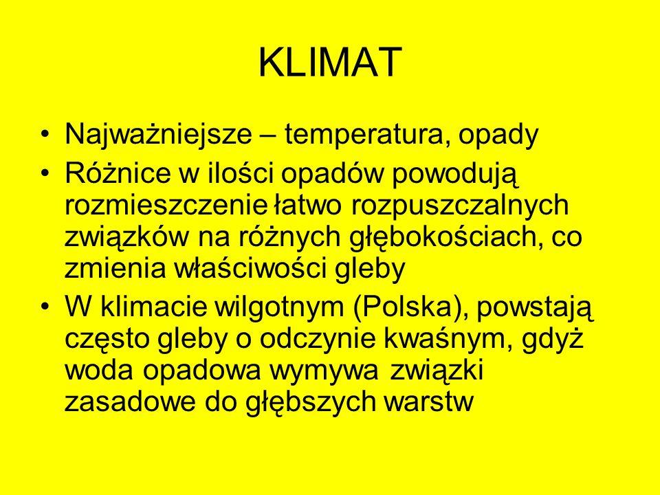 KLIMAT Najważniejsze – temperatura, opady