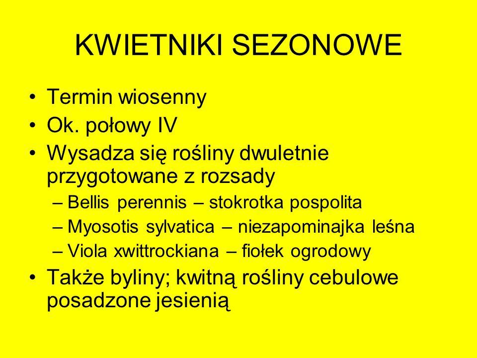 KWIETNIKI SEZONOWE Termin wiosenny Ok. połowy IV