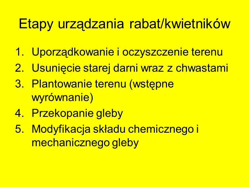 Etapy urządzania rabat/kwietników
