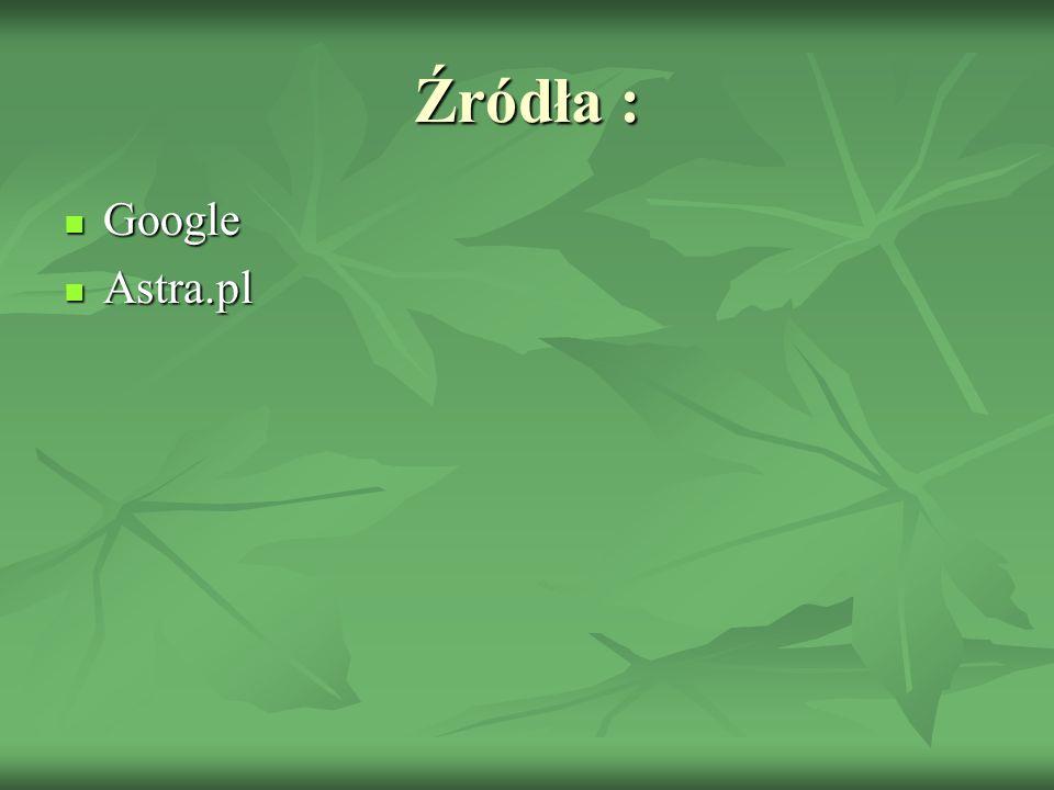 Źródła : Google Astra.pl