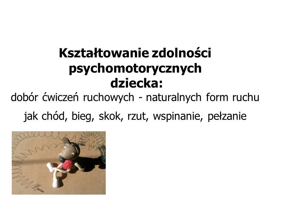 Kształtowanie zdolności psychomotorycznych dziecka: dobór ćwiczeń ruchowych - naturalnych form ruchu jak chód, bieg, skok, rzut, wspinanie, pełzanie