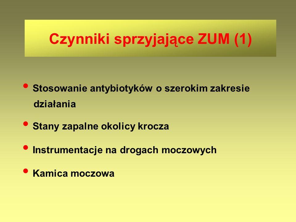 Czynniki sprzyjające ZUM (1)