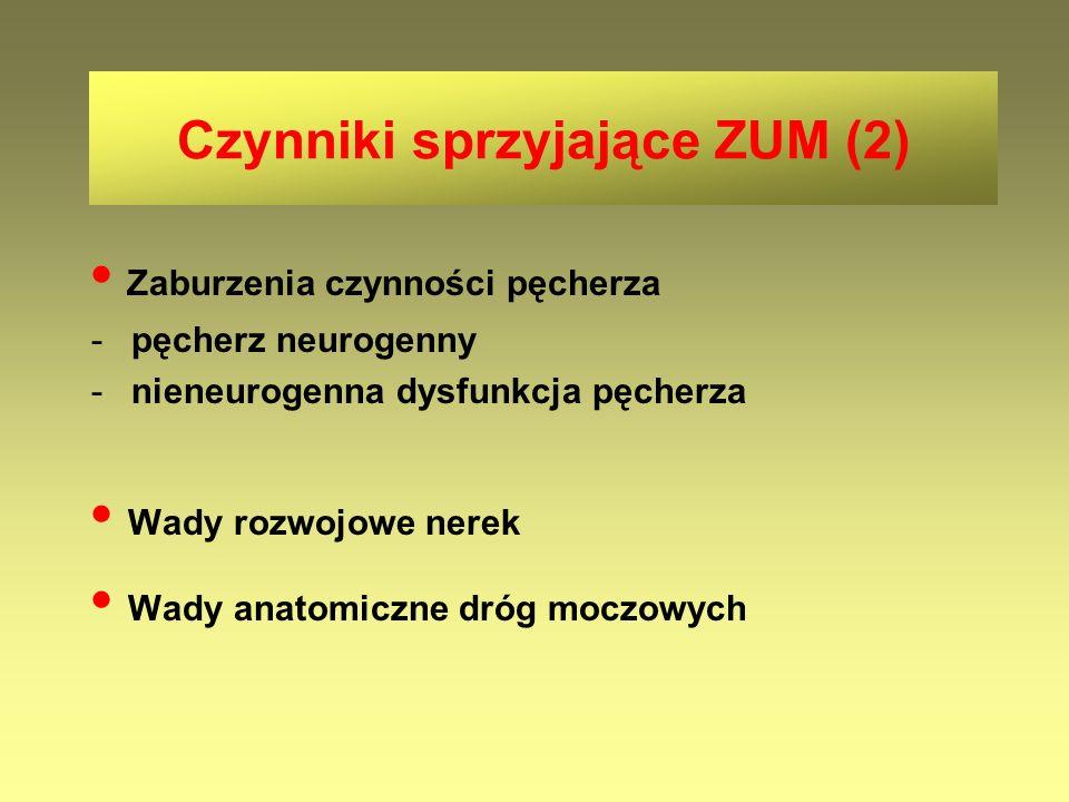 Czynniki sprzyjające ZUM (2)