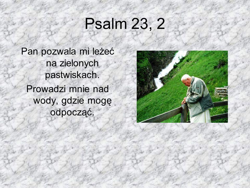 Psalm 23, 2 Pan pozwala mi leżeć na zielonych pastwiskach.