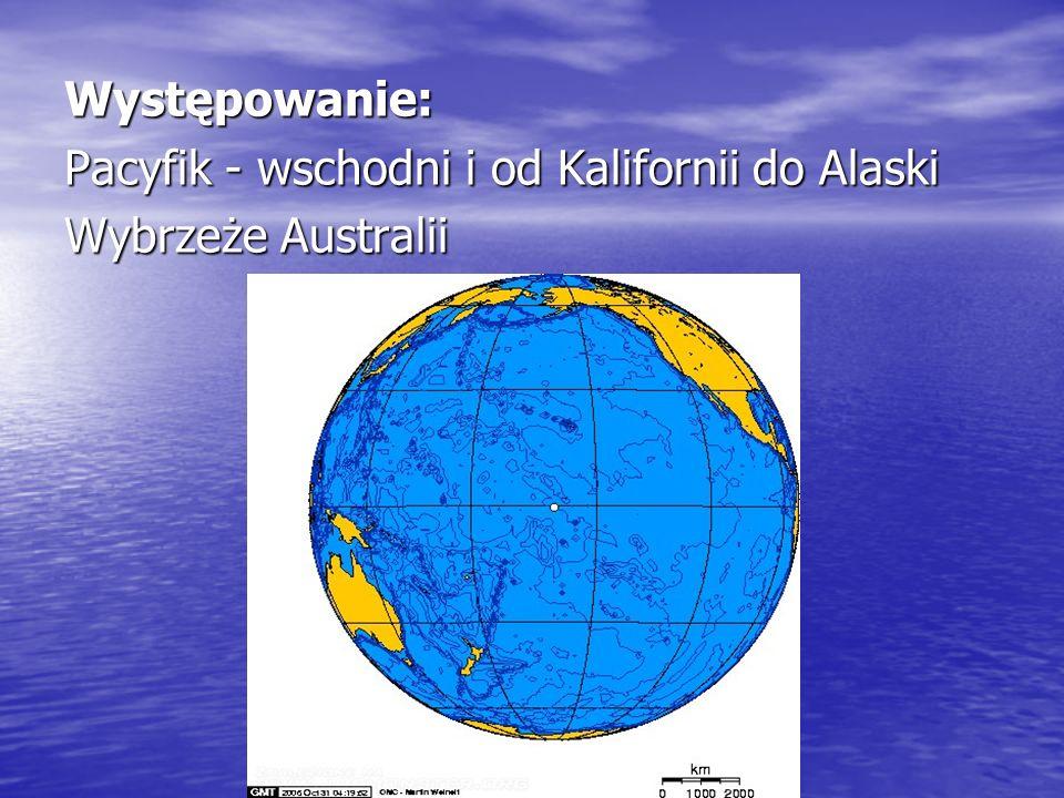 Występowanie: Pacyfik - wschodni i od Kalifornii do Alaski Wybrzeże Australii
