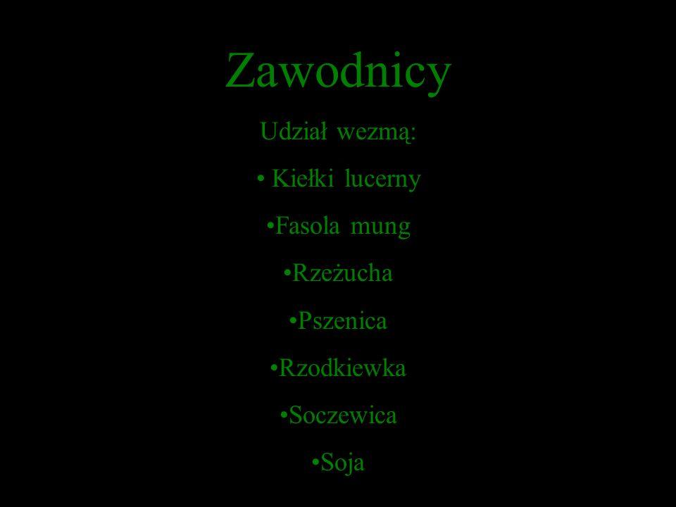 Zawodnicy Udział wezmą: Kiełki lucerny Fasola mung Rzeżucha Pszenica