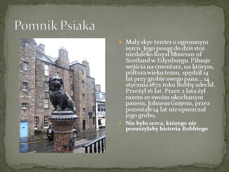 Pomnik Psiaka