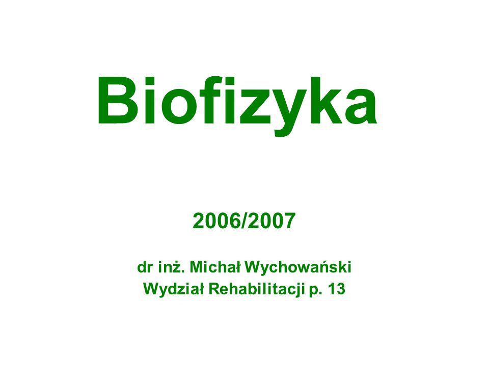 2006/2007 dr inż. Michał Wychowański Wydział Rehabilitacji p. 13