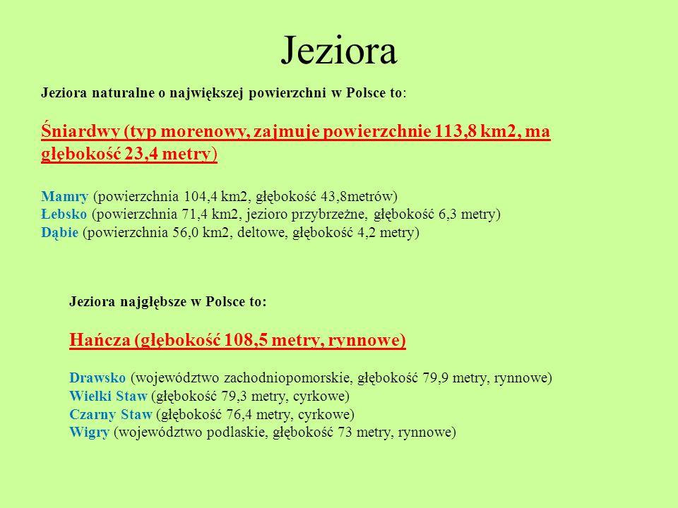 Jeziora Jeziora naturalne o największej powierzchni w Polsce to: Śniardwy (typ morenowy, zajmuje powierzchnie 113,8 km2, ma głębokość 23,4 metry)