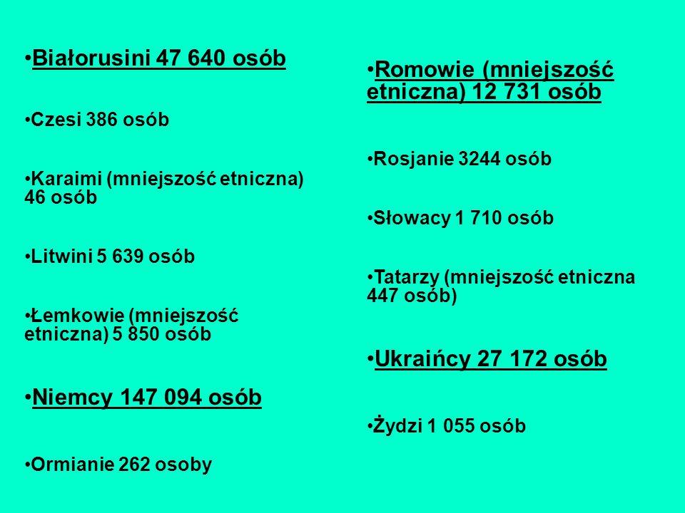 Romowie (mniejszość etniczna) 12 731 osób