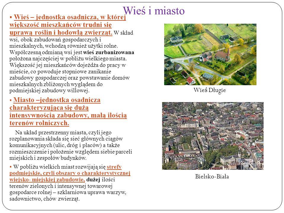 Wieś i miasto