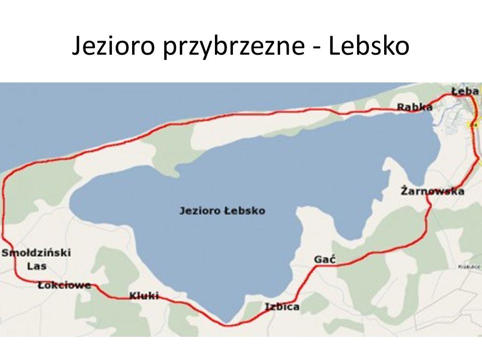 Jezioro przybrzezne - Lebsko