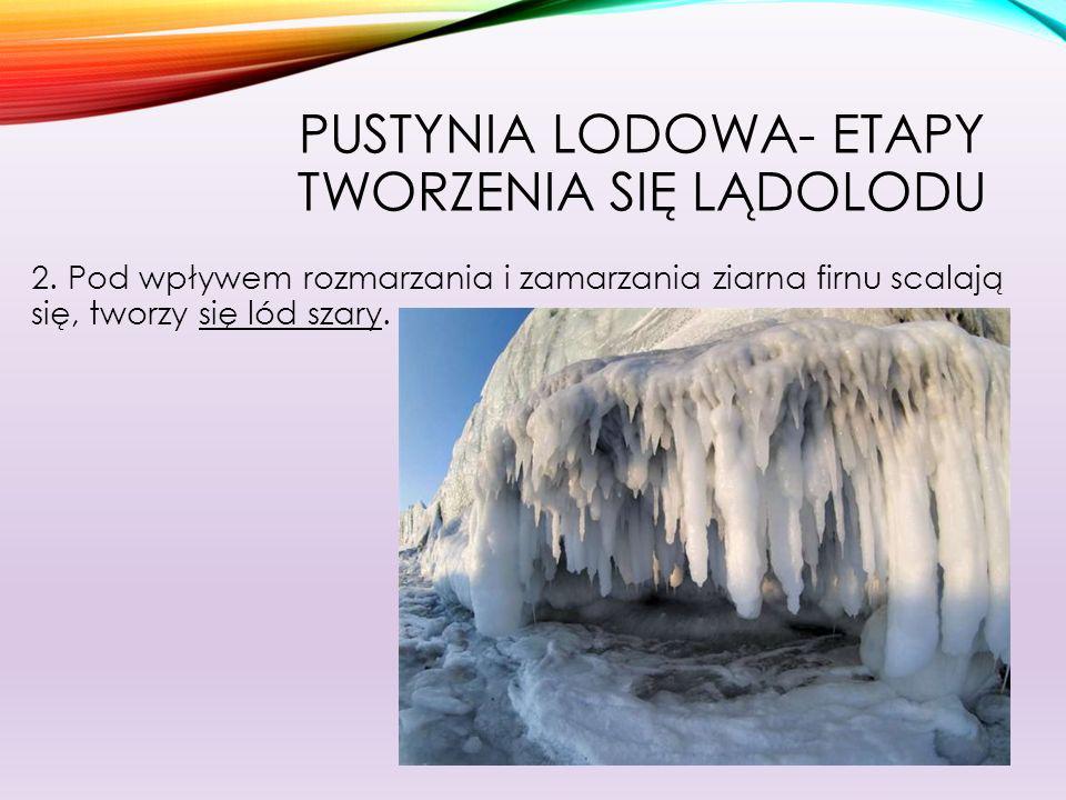 Pustynia lodowa- etapy tworzenia się lądolodu