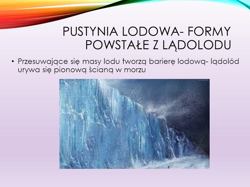 Pustynia lodowa- formy powstałe z lądolodu