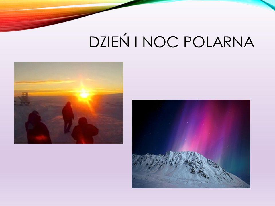 Dzień i noc polarna