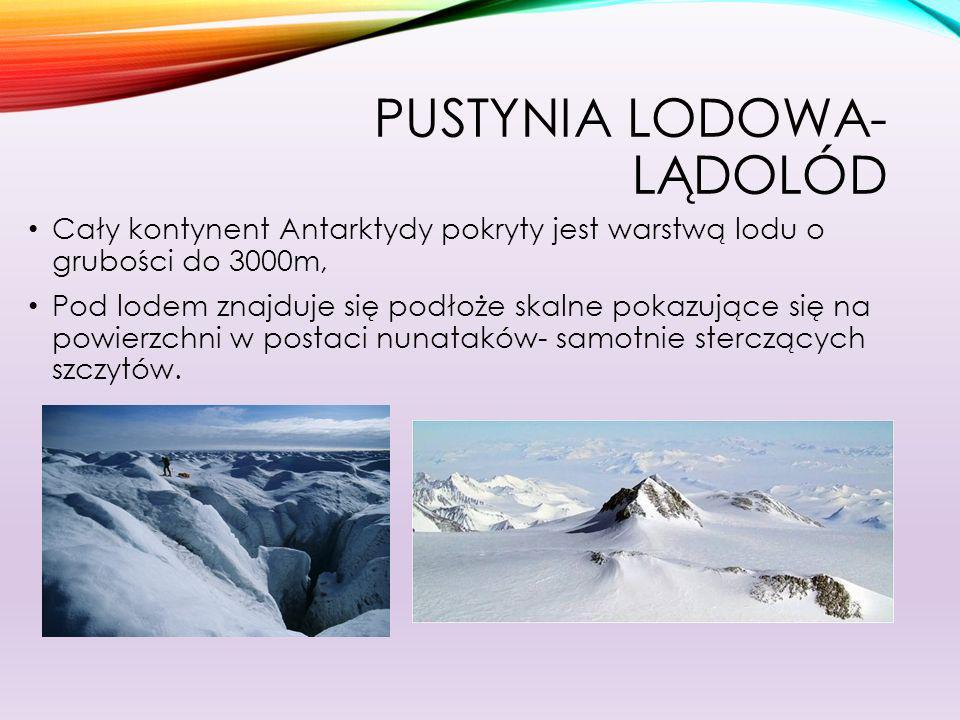 Pustynia lodowa- lądolód