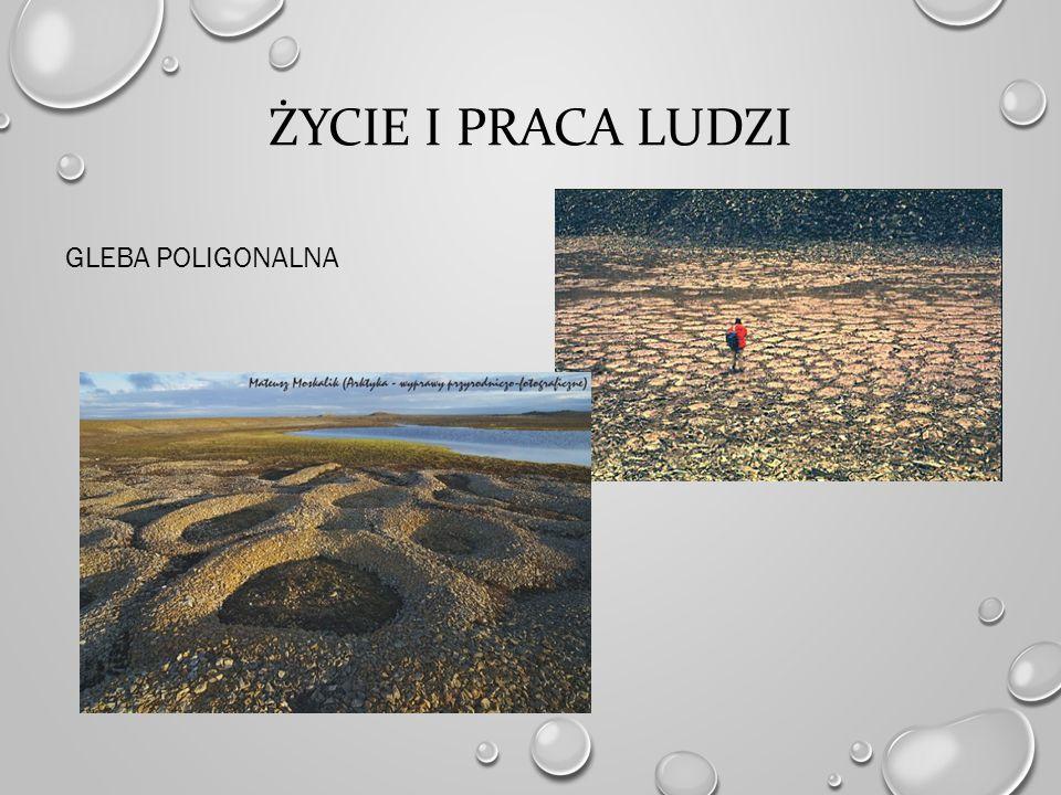 Życie i praca ludzi Gleba poligonalna