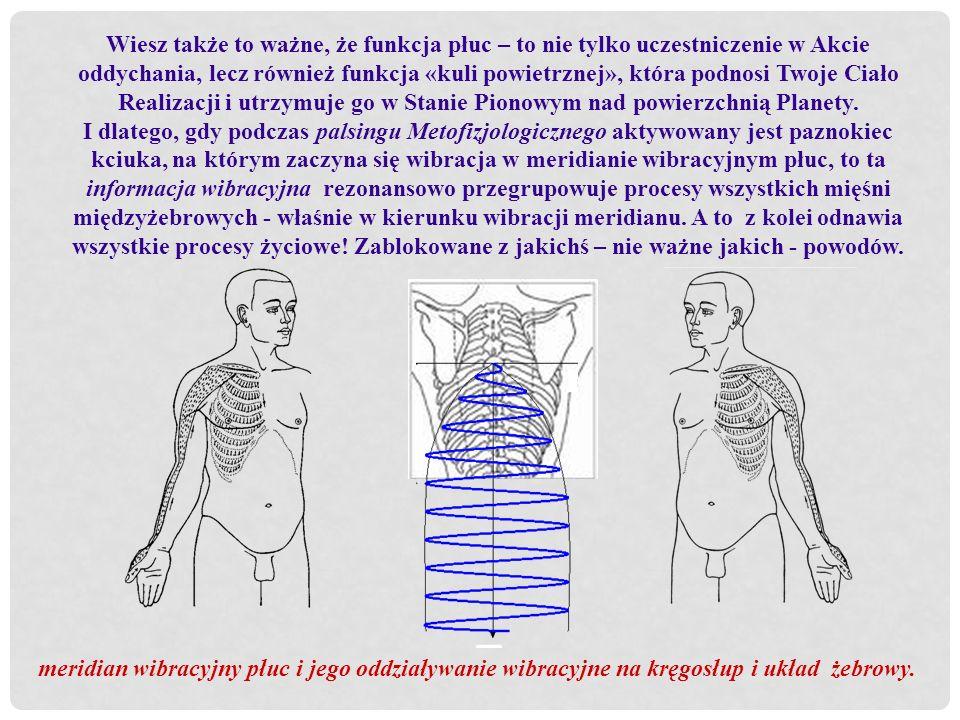 Wiesz także to ważne, że funkcja płuc – to nie tylko uczestniczenie w Akcie oddychania, lecz również funkcja «kuli powietrznej», która podnosi Twoje Ciało Realizacji i utrzymuje go w Stanie Pionowym nad powierzchnią Planety.