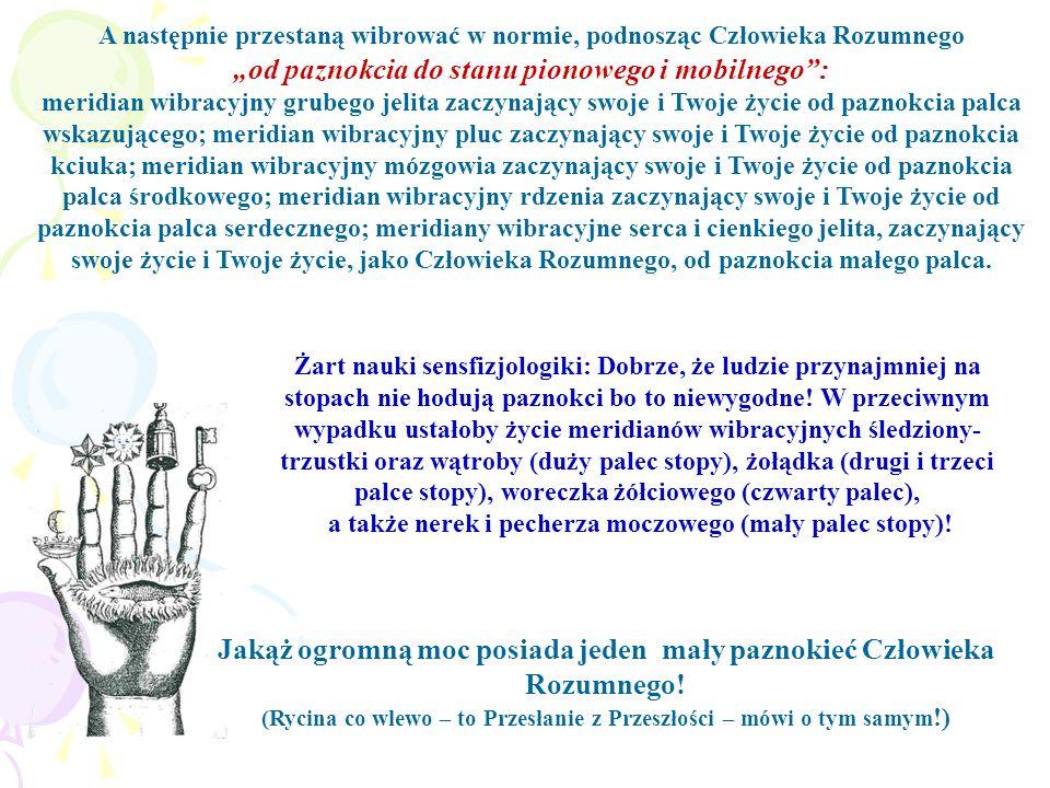 """""""od paznokcia do stanu pionowego i mobilnego :"""