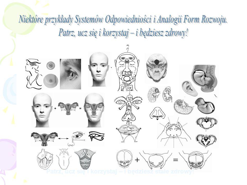 Niektóre przykłady Systemów Odpowiedniości i Analogii Form Rozwoju.