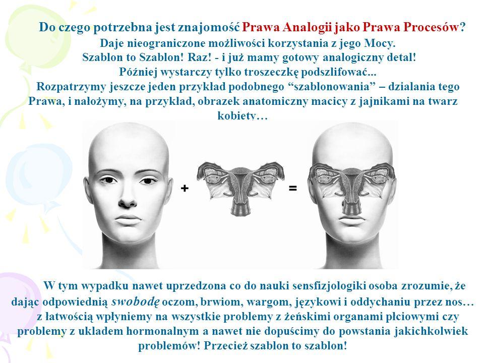 Do czego potrzebna jest znajomość Prawa Analogii jako Prawa Procesów