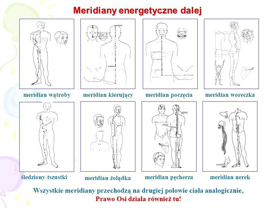 Meridiany energetyczne dalej