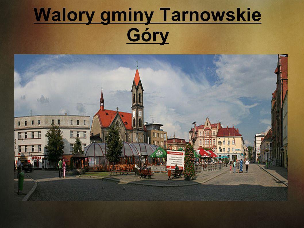 Walory gminy Tarnowskie Góry