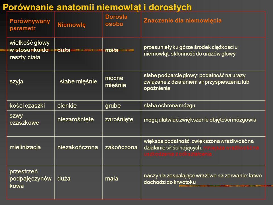 Porównanie anatomii niemowląt i dorosłych