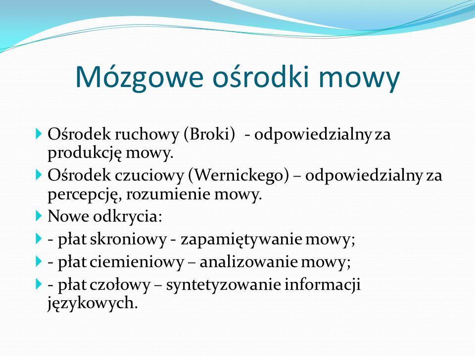 Mózgowe ośrodki mowyOśrodek ruchowy (Broki) - odpowiedzialny za produkcję mowy.