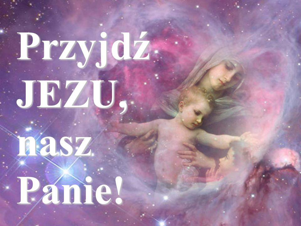 Tak - niech się stanie, Amen! Przyjdź JEZU, nasz Panie!