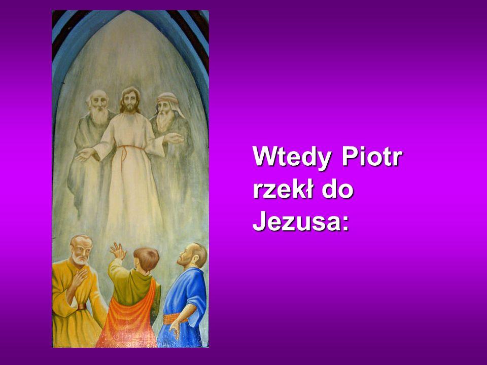 Wtedy Piotr rzekł do Jezusa: