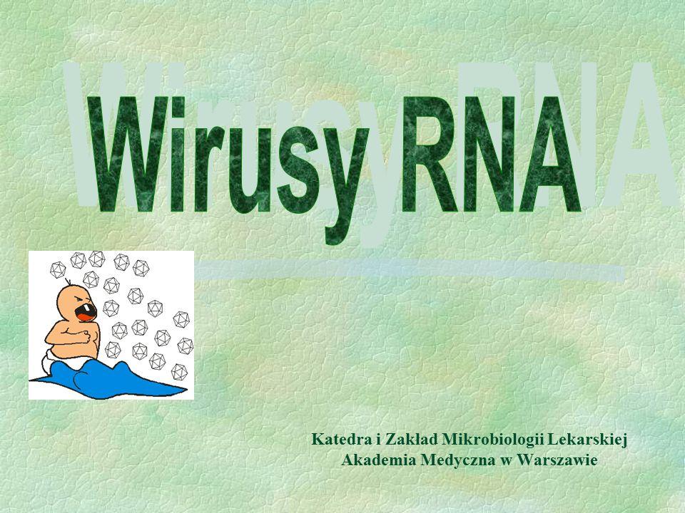 Wirusy RNA Katedra i Zakład Mikrobiologii Lekarskiej